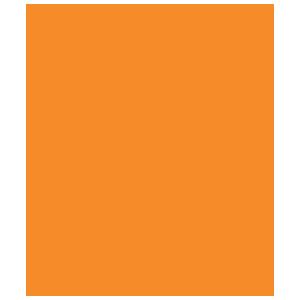 Pioneering Icon